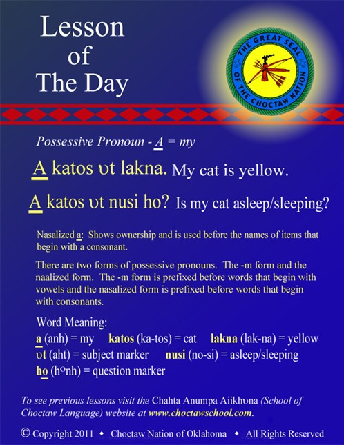 Possessive Pronouns A(n) katos
