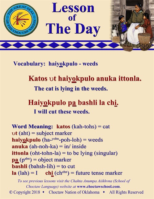 Vocabulary Haiyokpulo
