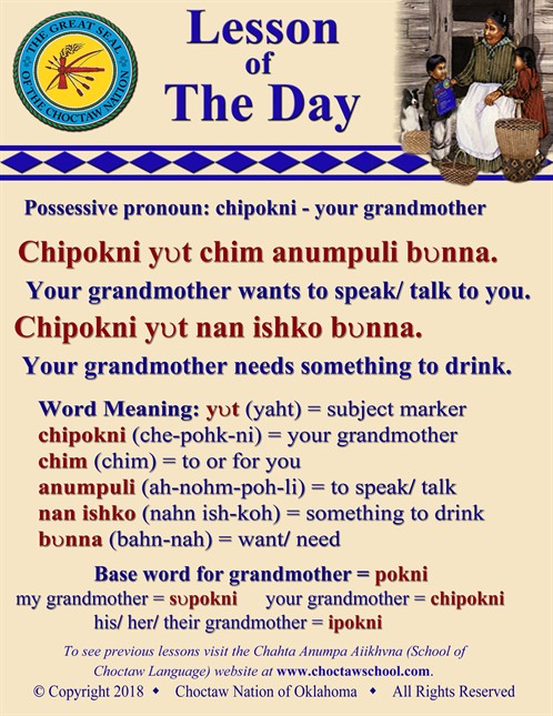 Possessive Pronoun Chipokni