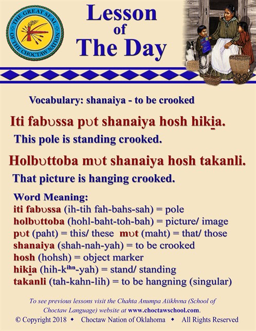 Vocabulary _shanaiya